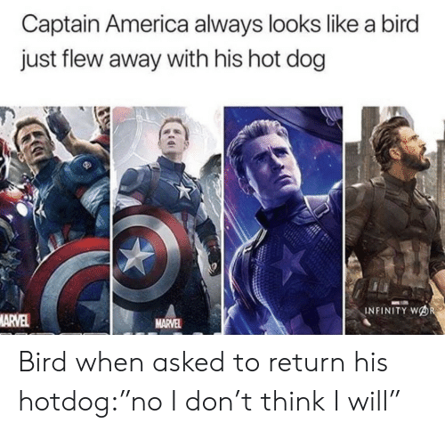 "Captain America: Captain America always looks like a bird  just flew away with his hot dog  INFINITY WOR  MARVEL  MARVEL Bird when asked to return his hotdog:""no I don't think I will"""