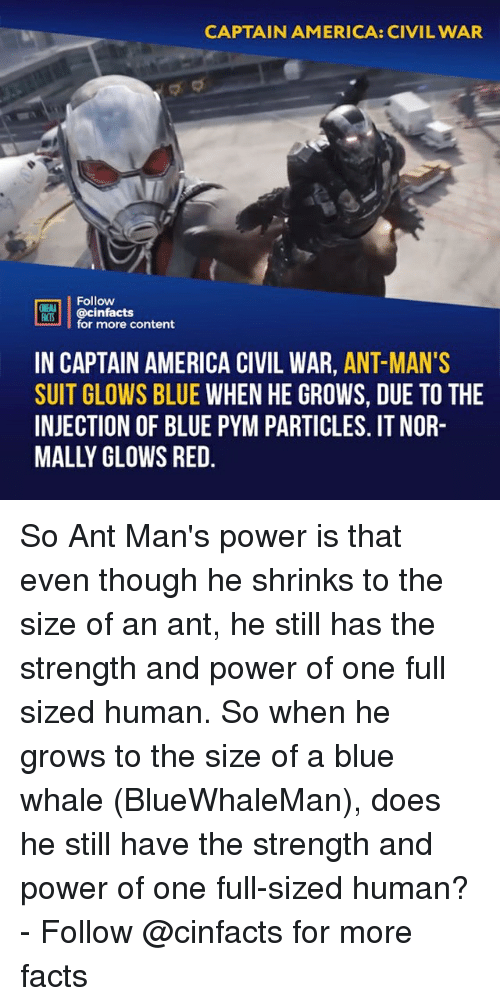 Captain America: Civil War: CAPTAIN AMERICA: CIVIL WAR  Follow  OINENA  ACTS  REB İ | @cinfacts  for more content  IN CAPTAIN AMERICA CIVIL WAR, ANT-MAN'S  SUIT GLOWS BLUE WHEN HE GROWS, DUE TO THE  INJECTION OF BLUE PYM PARTICLES. IT NOR-  MALLY OLOWS RED So Ant Man's power is that even though he shrinks to the size of an ant, he still has the strength and power of one full sized human. So when he grows to the size of a blue whale (BlueWhaleMan), does he still have the strength and power of one full-sized human?⠀ -⠀ Follow @cinfacts for more facts
