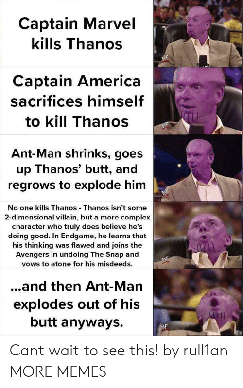 ant man: Captain Marvel  kills Thanos  Captain America  sacrifices himself  to kill Thanos  Ant-Man shrinks, goes  up Thanos' butt, and  regrows to explode him  No one kills Thanos Thanos isn't some  2-dimensional villain, but a more complex  character who truly does believe he's  doing good. In Endgame, he learns that  his thinking was flawed and joins the  Avengers in undoing The Snap and  vows to atone for his misdeeds.  ...and then Ant-Man  explodes out of his  butt anyways. Cant wait to see this! by rull1an MORE MEMES