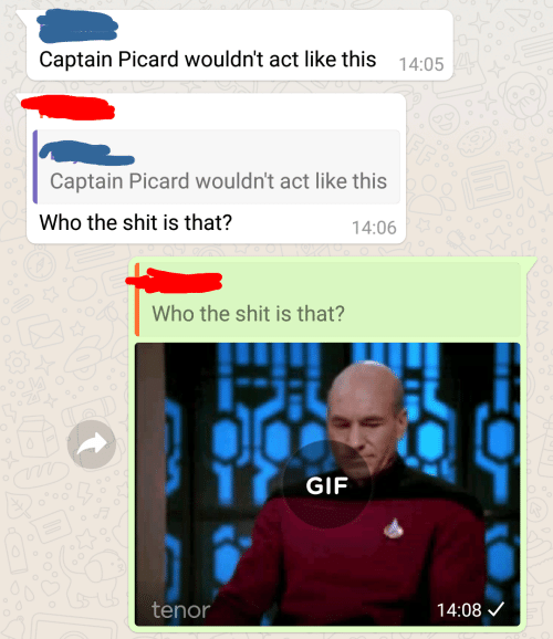 captain picard: Captain Picard wouldn't act like this 14:05  Captain Picard wouldn't act like this  Who the shit is that?  14:06  Who the shit is that?  GIF  14:08 V  tenor