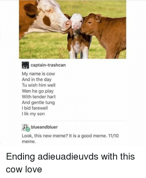 tung: captain-trashcan  My name is cow  And in the day  Tu wish him well  Wen he go play  With tender hart  And gentle tung  I bid farewell  I lik my son  blueandbluer  Look, this new meme? It is a good meme. 1110  meme Ending adieuadieuvds with this cow love