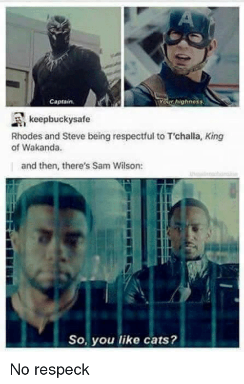 Cats, Dank Memes, and Your Highness: Captain,  Your highness  A, keepbucky safe  Rhodes and Steve being respectful to Trchalla, King  of Wakanda.  and then, there's Sam Wilson:  So, you like cats? No respeck
