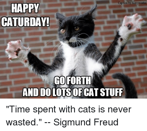 "Sigmund Freud: Caption by Kitty wor  HAPPY  CATURDAY!  GO FORTH  AND DOLOTSOF CAT STUFF ""Time spent with cats is never wasted.""  --  Sigmund Freud"
