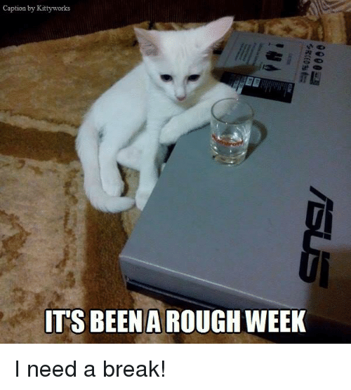 Rough Week: Caption by Kitty works  TTS BEEN A ROUGH WEEK I need a break!