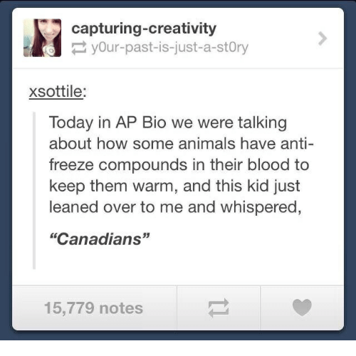 """Animals, Today, and Anti: capturing-creativity  yOur-past-is-just-a-stOry  xsottile:  Today in AP Bio we were talking  about how some animals have anti-  freeze compounds in their blood to  keep them warm, and this kid just  leaned over to me and whispered  """"Canadians""""  15,779 notes"""