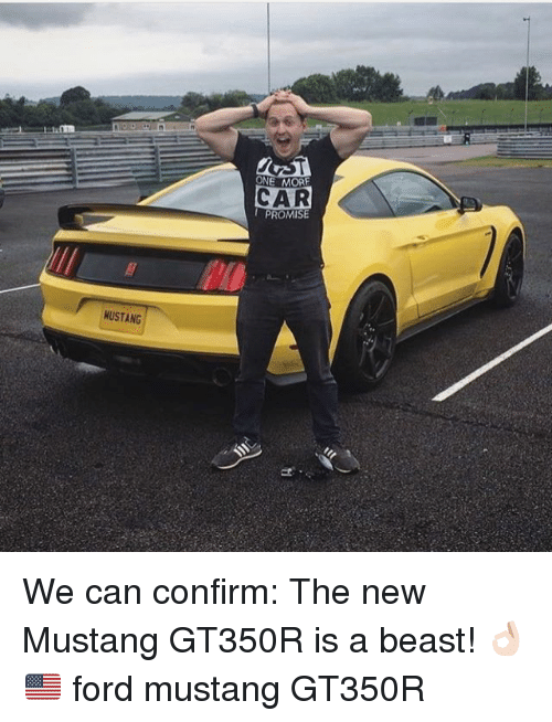 Memes, Ford, and Ford Mustang: CAR  MUSTANG We can confirm: The new Mustang GT350R is a beast! 👌🏻🇺🇸 ford mustang GT350R