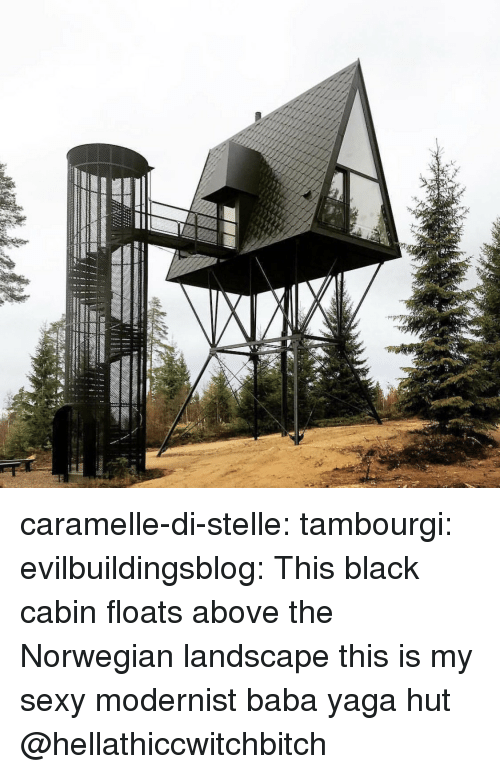 Norwegian: caramelle-di-stelle: tambourgi:  evilbuildingsblog: This black cabin floats above the Norwegian landscape this is my sexy modernist baba yaga hut   @hellathiccwitchbitch