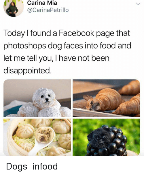 Dog Faces: Carina  Mia  @CarinaPetrillo  Today l found a Facebook page that  photoshops dog faces into food and  let me tell you, I have not beer  disappointed. Dogs_infood