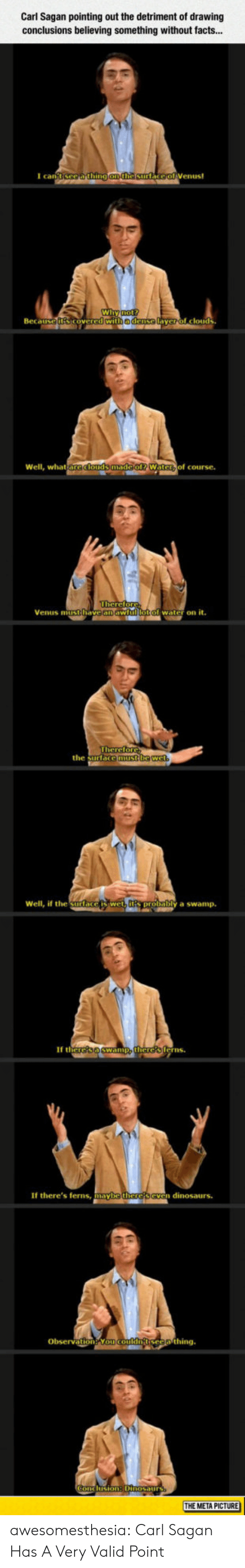 Valid Point: Carl Sagan pointing out the detriment of drawing  conclusions believing something without facts...  I can  Wi  Beca  edense  yerol clouds  Well, what  of course.  Venus mitithave an aw  water on it.  the surtace  Well, if the Surlace  y a swamp.  If th  erns  If there's ferns, mayb  n dinosaurs.  Obsevation Yo  THE META PICTURE awesomesthesia:  Carl Sagan Has A Very Valid Point