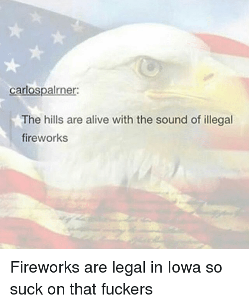 Alive, Memes, and Fireworks: carlospalrner:  The hills are alive with the sound of illegal  fireworksS Fireworks are legal in Iowa so suck on that fuckers
