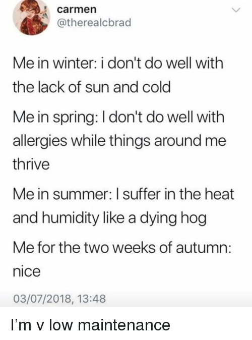 Winter, Summer, and Heat: carmen  @therealcbrad  Me in winter: i don't do well with  the lack of sun and cold  Me in spring: I don't do well with  allergies while things around me  thrive  Me in summer: Isuffer in the heat  and humidity like a dying hog  Me for the two weeks of autumn  nice  03/07/2018, 13:48 I'm v low maintenance