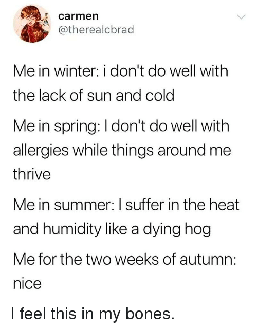 Bones, Memes, and Winter: carmen  @therealcbrad  Me in winter: i don't do well with  the lack of sun and cold  Me in spring: I don't do well with  allergies while things around me  thrive  Me in summer: I suffer in the heat  and humidity like a dying hog  Me for the two weeks of autum  nice I feel this in my bones.