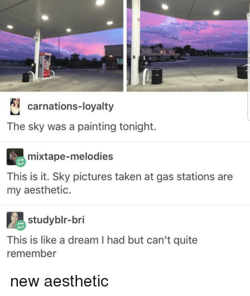 Mixtape: carnations-loyalty  The sky was a painting tonight.  mixtape-melodies  This is it. Sky pictures taken at gas stations are  my aesthetic.  studyblr-bri  This is like a dream I had but can't quite  remember new aesthetic