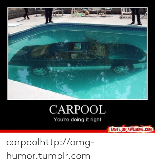 Youre Doing It Right: CARPOOL  You're doing it right  TASTE OF AWESOME.COM carpoolhttp://omg-humor.tumblr.com