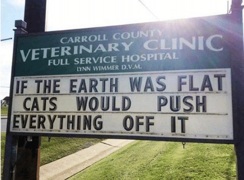 Clinic: CARROLL COUNTY  VETERINARY CLINIC  FULL SERVICE HOSPITAL  LYNN WIMMER D.V.M  IF THE EARTH WAS FLAT  CATS WOULD  EVERYTHING OFF IT  PUSH