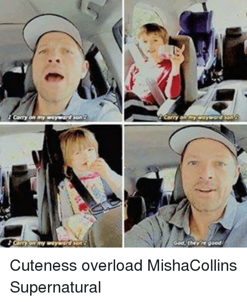 God, Memes, and Good: Carry on my wayward son  Carry,on'my we  God, they're good Cuteness overload MishaCollins Supernatural