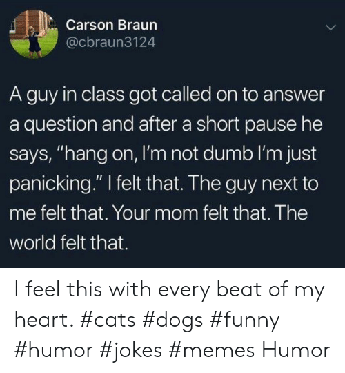 "Memes Humor: Carson Braun  @cbraun3124  A guy in class got called on to answer  a question and after a short pause he  says, ""hang on, I'm not dumb I'm just  panicking."" felt that. The guy next to  me felt that. Your mom felt that. The  world felt that. I feel this with every beat of my heart. #cats #dogs #funny #humor #jokes #memes Humor"