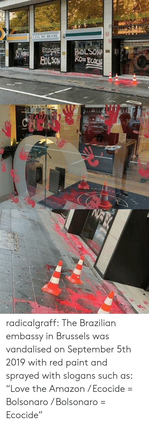 """Bolsonaro: CASA DO BRASIL  BOLSONA  Ro ECOCIP  ECOGIDE  BOLSON  350   CHOO radicalgraff:   The Brazilian embassy in Brussels was vandalised on September 5th 2019  with red paint and sprayed with slogans such as: """"Love the Amazon /  Ecocide = Bolsonaro / Bolsonaro = Ecocide"""""""