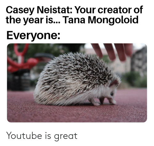 casey neistat: Casey Neistat: Your creator of  the year is... Tana Mongoloid  Everyone: Youtube is great