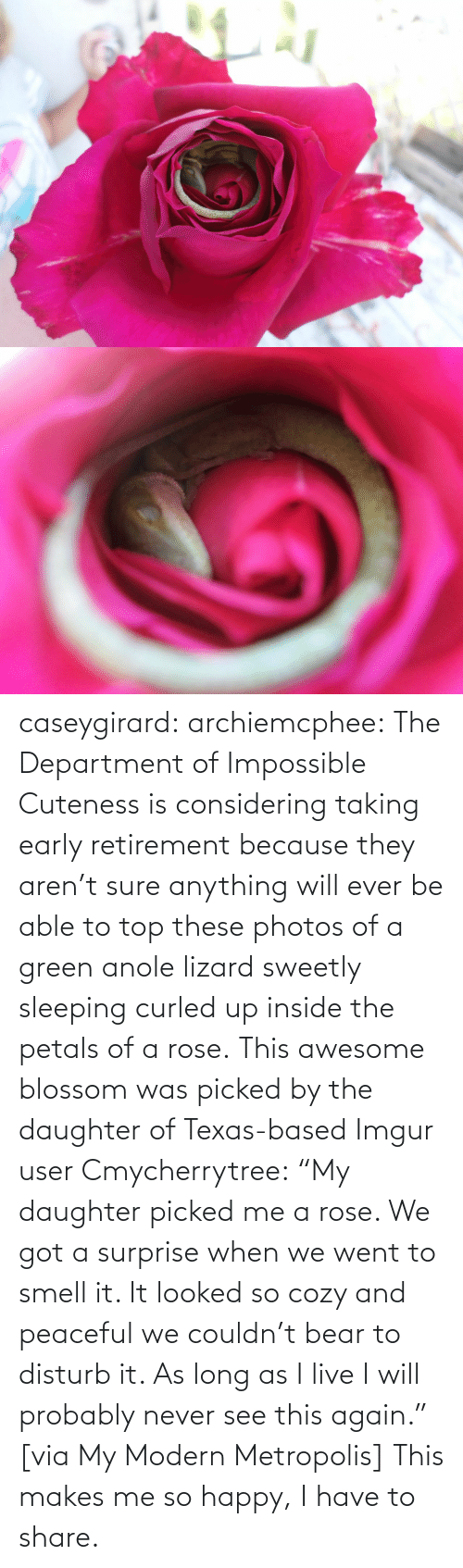 "So Happy: caseygirard:  archiemcphee:   The Department of Impossible Cuteness is considering taking early retirement because they aren't sure anything will ever be able to top these photos of a green anole lizard sweetly sleeping curled up inside the petals of a rose. This awesome blossom was picked by the daughter of Texas-based Imgur user Cmycherrytree: ""My daughter picked me a rose. We got a surprise when we went to smell it. It looked so cozy and peaceful we couldn't bear to disturb it. As long as I live I will probably never see this again."" [via My Modern Metropolis]   This makes me so happy, I have to share."