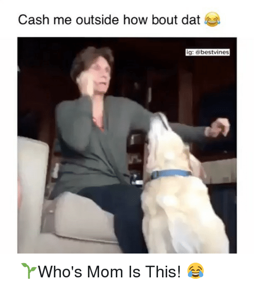Bout Dat: Cash me outside how bout dat  ig: a bestvinges ⠀ 🌱Who's Mom Is This! 😂