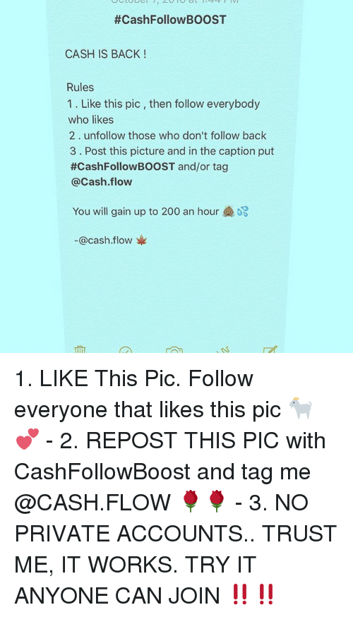 Memes, Boost, and Captioned:  #CashFollow BOOST  CASH IS BACK  Rules  1. Like this pic, then follow everybody  who likes  2 unfollow those who don't follow back  3 Post this picture and in the caption put  #CashFollowBOOST and/or tag  Cash flow  You will gain up to 200 an hour  @cash flow 1. LIKE This Pic. Follow everyone that likes this pic 🐐💕 - 2. REPOST THIS PIC with CashFollowBoost and tag me @CASH.FLOW 🌹🌹 - 3. NO PRIVATE ACCOUNTS.. TRUST ME, IT WORKS. TRY IT ANYONE CAN JOIN ‼️‼️