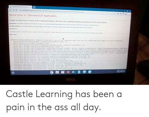 The Ass: Castle Learning has been a pain in the ass all day.