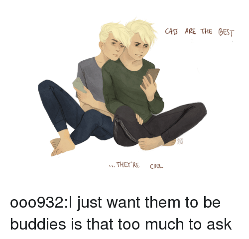 Too Much To Ask: CAT ARE THE EST  932  THEY RE CooL ooo932:I just want them to be buddies is that too much to ask