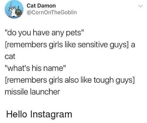 """Girls, Hello, and Instagram: Cat Damon  @CornOnTheGoblin  """"do you have any pets""""  [remembers girls like sensitive guys] a  cat  """"what's his name""""  [remembers girls also like tough guys]  missile launcher Hello Instagram"""