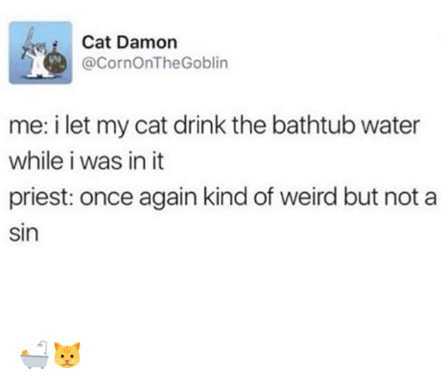 Damon: Cat Damon  @CornOnTheGoblin  me: i let my cat drink the bathtub water  while i was in it  priest: once again kind of weird but not a  sin 🛀🐱