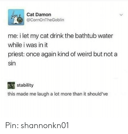 Damon: Cat Damon  @CornOnTheGoblin  me: i let my cat drink the bathtub water  while i was in it  priest: once again kind of weird but not a  sin  stability  this made me laugh a lot more than it should've Pin: shannonkn01