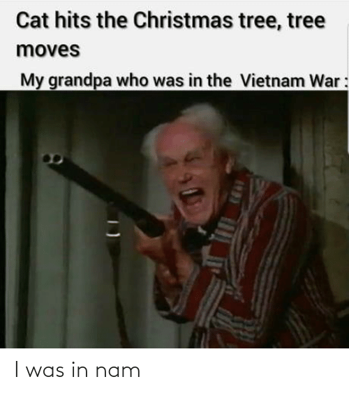 Vietnam: Cat hits the Christmas tree, tree  moves  My grandpa who was in the Vietnam War: I was in nam