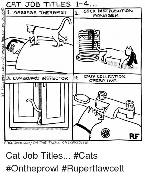 prowl: CAT JOB TITLES 1-4  S 1. MASSAGE THERAPIST  D SOCK DISTRIBUTION  MANAGER  DRIP COLLECTION  E13. CUPBOARD INSPECTOR  4  OPERATIVE  RF  FACETSook COM/ ON THE PROwL CAT CARTOONS Cat Job Titles... #Cats #Ontheprowl #Rupertfawcett