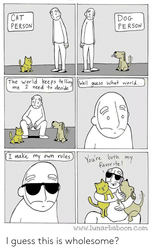 Lunarbaboon: CAT  PERSON  DoG  PERSON  The world kee ps te llingWell quess What world..  me I need to decide  I make my  own rules  You're both my  favorite!  www.lunarbaboon.com I guess this is wholesome?