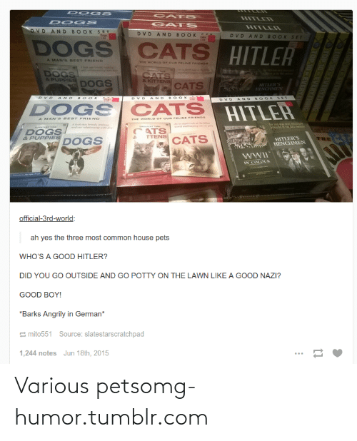 Dogs: CAT S  HITLER  DOC s  GATS  HITLER  DVD AND BOOK SET  DVD AND BOOK  DVD AND BOOK SET  Degs  DOGS CATS HITLER  Cats  A MAN'S BEST FRIEND  THE WORLD OF OUR PELINE PRIENDS  DOGS  & PUPPIES  CATS  & KITTENS  DOGS  CATS  HITLER'S  HENCHMEN  BOOKS  AND  BOOK  DVD AND  BOOK SET  AND  DOGS  CATS  HITLEH  UR FELINE FRIENDS  A MAN' S BEST FRIEND  THE WORLD OF O  A dep the  wlddkeeping ct et  dr rela t  ATS  TTENS  DOGS  & PUPPIES  CATS  HITLER'S  HENCHMEN  DOGS  THE  IN COLOUR  official-3rd-world:  ah yes the three most common house pets  WHO'S A GOOD HITLER?  DID YOU GO OUTSIDE AND GO POTTY ON THE LAWN LIKE A GOOD NAZI?  GOOD BOY!  *Barks Angrily in German*  E mito551 Source: slatestarscratchpad  1,244 notes Jun 18th, 2015 Various petsomg-humor.tumblr.com