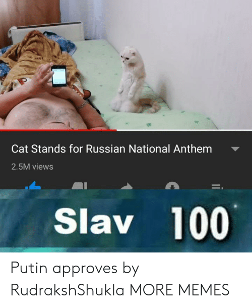 Slav: Cat Stands for Russian National Anthem  2.5M views  Slav 100 Putin approves by RudrakshShukla MORE MEMES