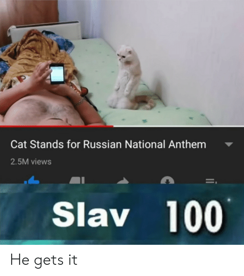 Slav: Cat Stands for Russian National Anthem  2.5M views  Slav 100 He gets it