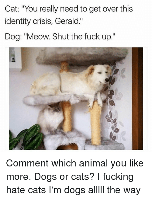 "Meowe: Cat: ""You really need to get over this  identity crisis, Gerald.""  Dog: ""Meow. Shut the fuck up."" Comment which animal you like more. Dogs or cats? I fucking hate cats I'm dogs alllll the way"