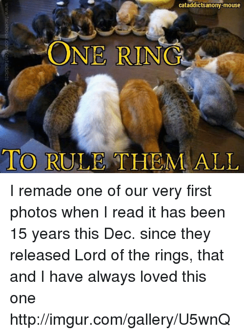 Rino: cataddictsanony-mouse  ONE RINO  TO RULE THEM ALL I remade one of our very first photos when I read it has been 15 years this Dec. since they released Lord of the rings, that and I have always loved this one http://imgur.com/gallery/U5wnQ