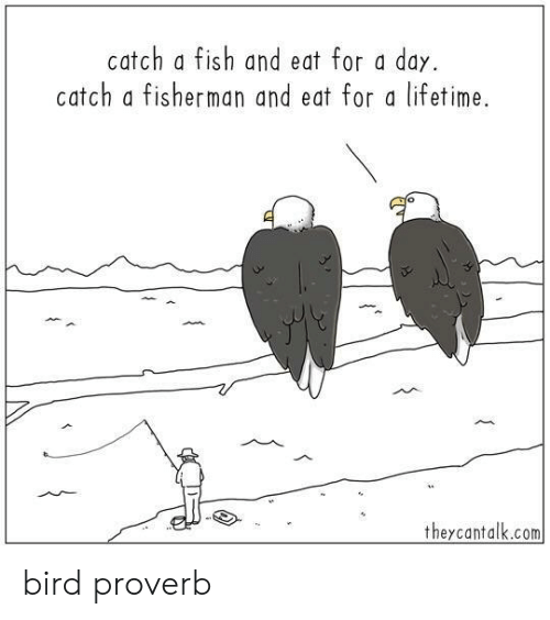 fisherman: catch a fish and eat for a day.  catch a fisherman and eat for a lifetime.  theycantalk.com bird proverb