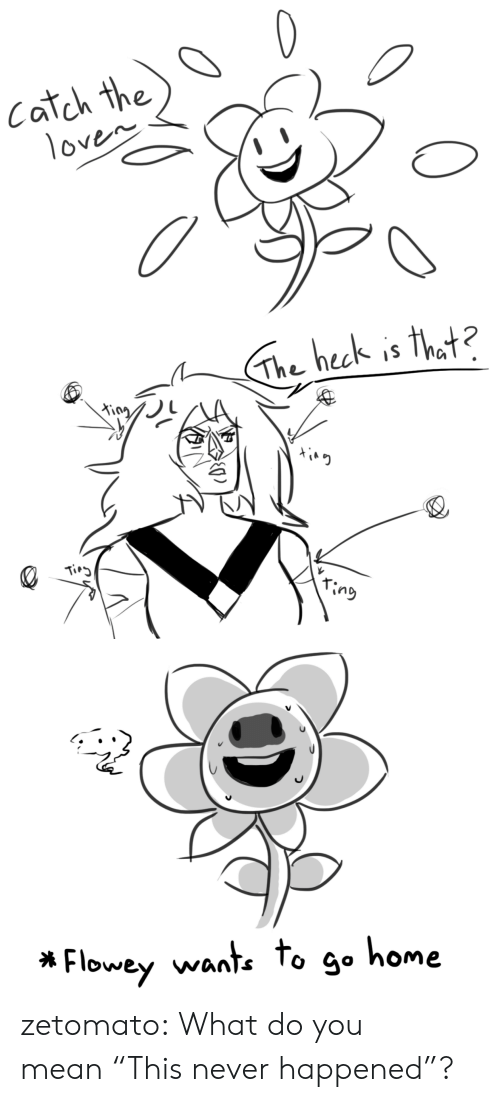 """to-go-home: Catch the  1oven   The heck is that?  King  Tirg  ring   Flowey wante to go home zetomato:  What do you mean""""This never happened""""?"""
