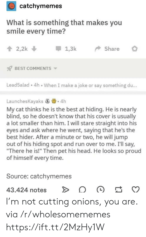"cutting: catchymemes  What is something that makes you  smile every time?  2,2k  1,3k  Share  BEST COMMENTS  Lead5alad 4h When I make a joke or say something du...  LaunchesKayaks 4h  My cat thinks he is the best at hiding. He is nearly  blind, so he doesn't know that his cover is usually  a lot smaller than him. I will stare straight into his  eyes and ask where he went, saying that he's the  best hider. After a minute or two, he will jump  out of his hiding spot and run over to me. I'll say,  ""There he is!"" Then pet his head. He looks so proud  of himself every time.  Source: catchymemes  43,424 notes I'm not cutting onions, you are. via /r/wholesomememes https://ift.tt/2MzHy1W"