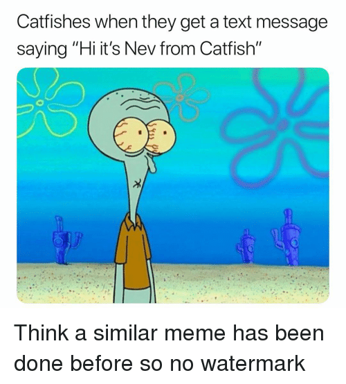 """Catfished, Meme, and Memes: Catfishes when they get a text message  saying """"Hi it's Nev from Catfish"""" Think a similar meme has been done before so no watermark"""