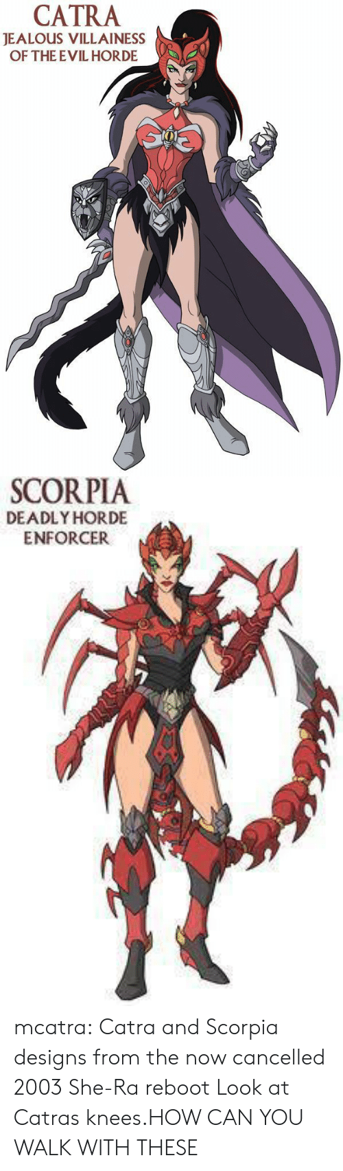 ReBoot: CATRA  JEALOUS VILLAINESS  OF THE EVIL HORDE   SCORPIA  DEADLY HORDE  ENFORCER mcatra:  Catra and Scorpia designs from the now cancelled 2003 She-Ra reboot  Look at Catras knees.HOW CAN YOU WALK WITH THESE