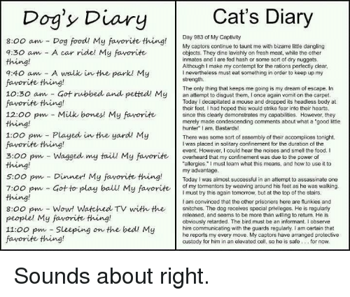 "Assassination, Bodies , and Bones: Cat's Diary  Dog's Diary  Day 983 of My Captivity  8:00 am Dog food! My favorite thing  My captors continue to taunt me with bizarre little dangling  a:30 am A car ride! My favorite  objects. They dine lavishly on fresh meat, while the other  inmates and I are fed hash or some sort of dry nuggets  Although make my contempt for the rations perfectly clear  9:40 am A walk in the parkl My  nevertheless must eat something in order to keep up my  strength.  favorite thing!  The only thing that keeps me going is my dream of escape. In  10:30 am Got rubbed and petted My  an attempt to disgust them, l once again vomit on the carpet  favorite thing!  Today decapitated a mouse and dropped its headless body at  their feet. Ihad hoped this would strike fear into their hearts  12:00 pm Milk bones My favorite  since this clearly demonstrates my capabilities. However, they  merely made condescending comments about what a ""good little  hunter"" I am, Bastards!  1:00 pm Played in the yard My  There was some sort of assembly of their accomplices tonight.  favorite thing!  I was placed in solitary confinement for the duration of the  event. However, I could hear the noises and smell the food. I  3:00 pm Wagged my taiu My favorite overheard that my confinement was due to the power of  thing!  allergies."" must learn what this means, and how to use it to  my advantage  5:00 pm Dinner! My favorite thing  Today was almost successful in an attempt to assassinate one  of my tormentors by weaving around his feet as he was walking  7:00 pm Got to play ball My favorite  I must try this again tomorrow, but at the top of the stairs  am convinced that the other prisoners here are flunkies and  8:00 pm Wow! Watched TV with the snitches. The dog receives special privileges. He is regularly  released, and seems to be more than willing to return. He is  people' My favorite thing!  obviously retarded. The bird must be an informant. I observe  11:00 pm Sleeping  on the bed! My  him communicating with the guards regularly, I am certain that  he reports my every move. My captors have arranged protective  favorite thing!  custody for him in an elevated cell, so he is safe for now Sounds about right."