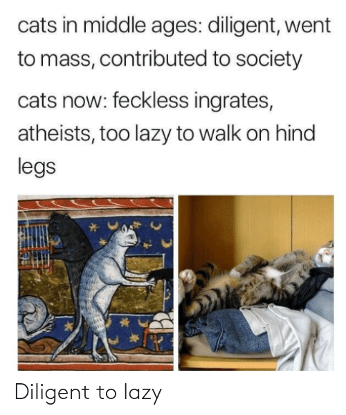 middle ages: cats in middle ages: diligent, went  to mass, contributed to society  cats now: feckless ingrates,  atheists, too lazy to walk on hind  legs Diligent to lazy