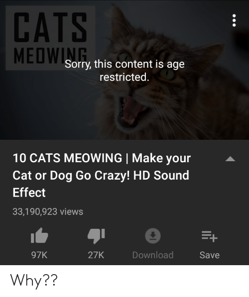 cat-or-dog: CATS  MEDWSorry, this content is age  restricted.  10 CATS MEOWING Make your  Cat or Dog Go Crazy! HD Sound  Effect  33,190,923 views  97K  27K  Download  Save Why??