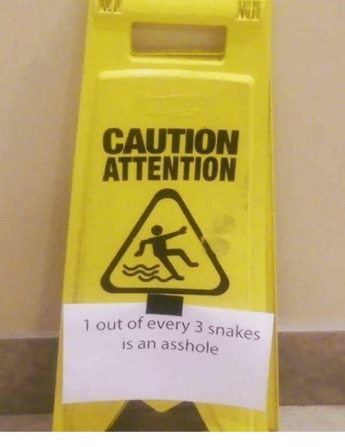 Dank, Snakes, and Asshole: CAUTION  ATTENTION  out of every 3 snakes  is an asshole  1