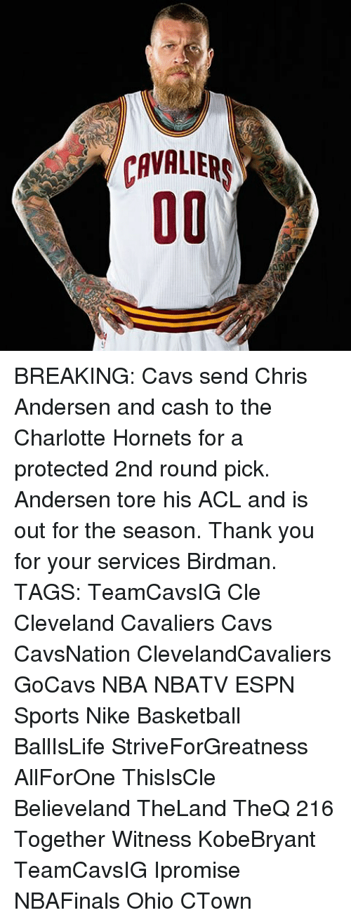 Birdman, Memes, and Charlotte Hornets: CAVALIERS  00 BREAKING: Cavs send Chris Andersen and cash to the Charlotte Hornets for a protected 2nd round pick. Andersen tore his ACL and is out for the season. Thank you for your services Birdman. TAGS: TeamCavsIG Cle Cleveland Cavaliers Cavs CavsNation ClevelandCavaliers GoCavs NBA NBATV ESPN Sports Nike Basketball BallIsLife StriveForGreatness AllForOne ThisIsCle Believeland TheLand TheQ 216 Together Witness KobeBryant TeamCavsIG Ipromise NBAFinals Ohio CTown