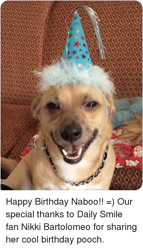bartolomeo: CCC  coccccccccc  CCOCCCC Happy Birthday Naboo!!  =)  Our special thanks to Daily Smile fan Nikki Bartolomeo for sharing her cool birthday pooch.